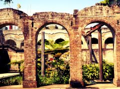 Paddington Reservoir Garden